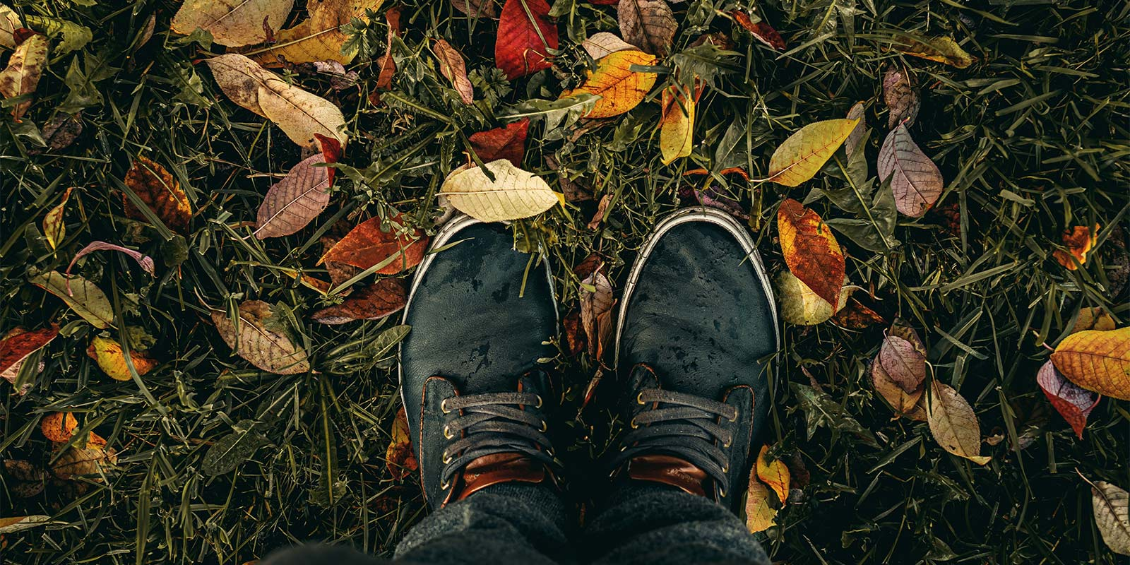 Man standing on fallen leaves